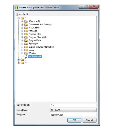 file extension BAK